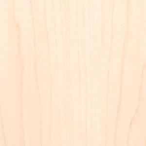 Sample of Hard Maple wood